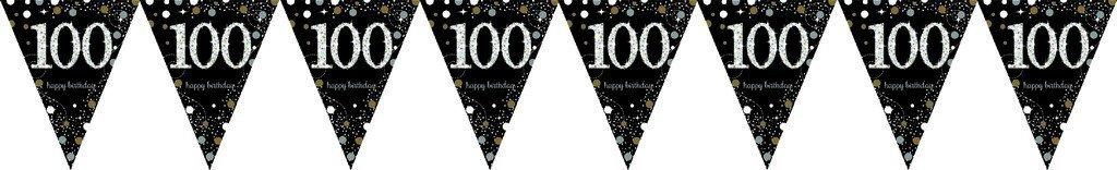 Sparkling Celebration 100 Prismatic Pennant Banner - Plastic