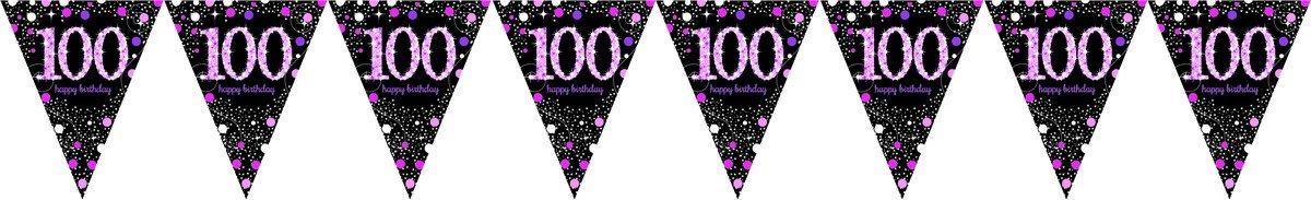 Pink Celebration 100 Prismatic Pennant Banner - Plastic
