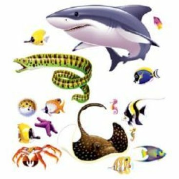 Under The Sea Marine Life Wall Decorations Insta-Theme Props