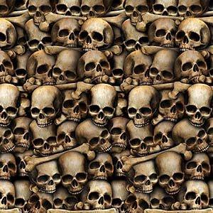 Backdrop Catacombs Skulls Scene Setter